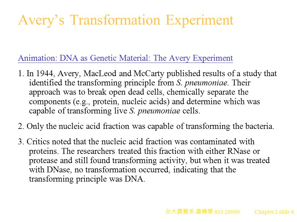 Avery's Transformation Experiment