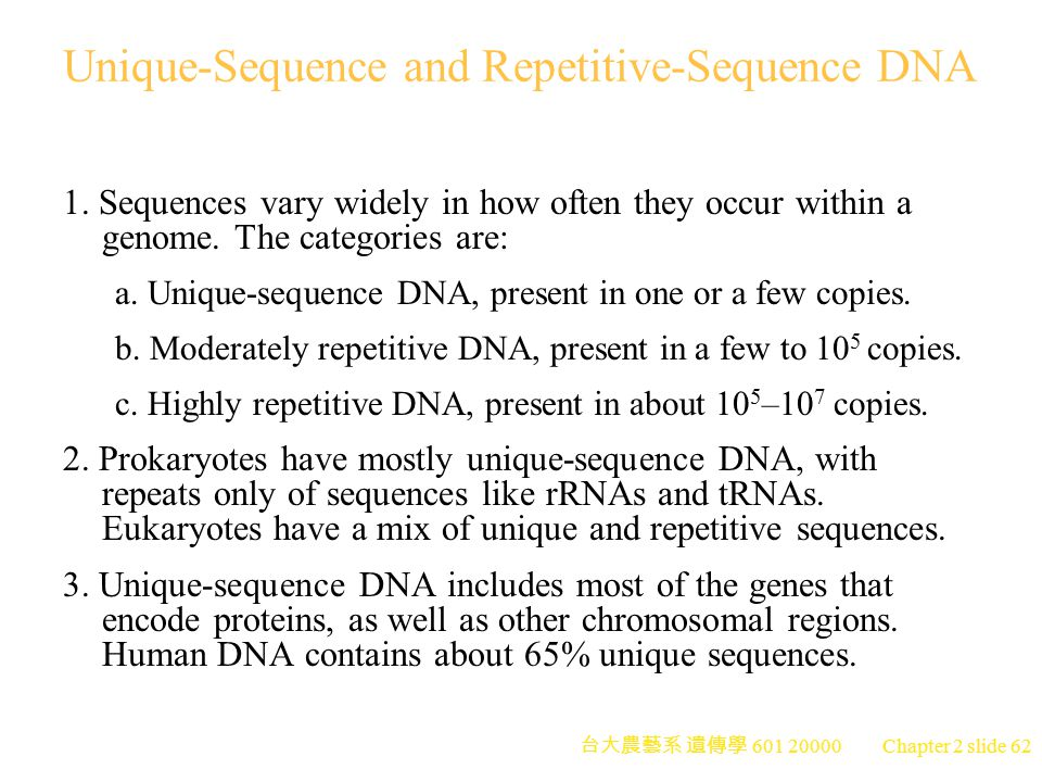 Unique-Sequence and Repetitive-Sequence DNA