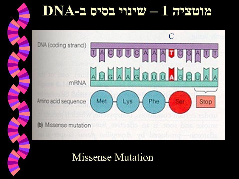 מוטציה 1 – שינוי בסיס ב-DNA