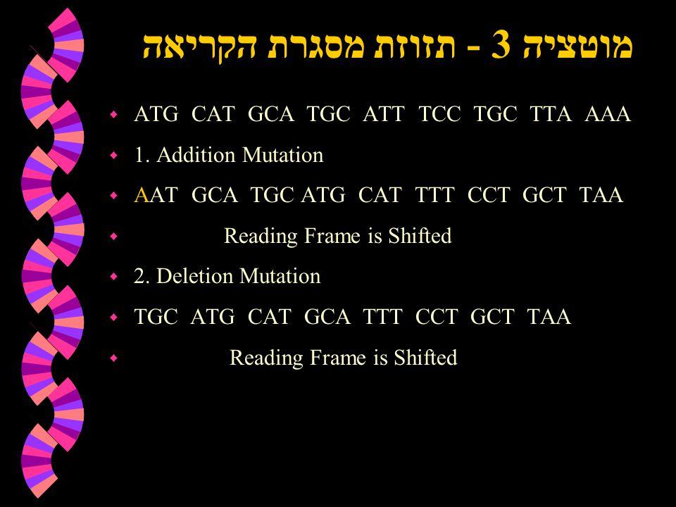 מוטציה 3 - תזוזת מסגרת הקריאה