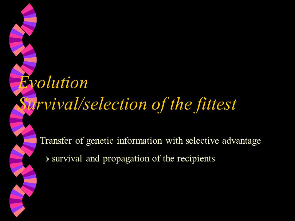 Evolution Survival/selection of the fittest