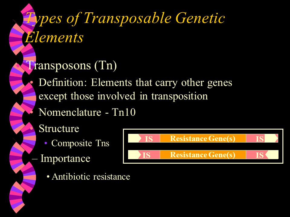 Types of Transposable Genetic Elements
