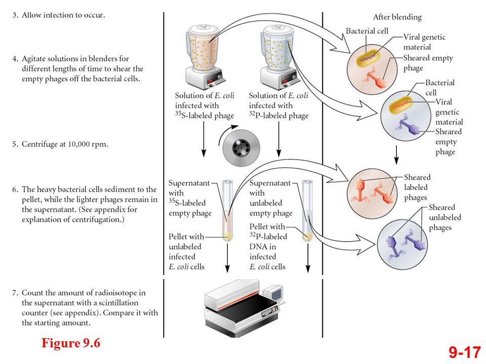 Figure 9.6 9-17