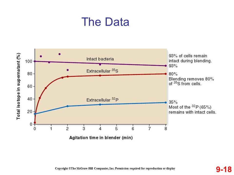 The Data 9-18. Copyright ©The McGraw-Hill Companies, Inc.