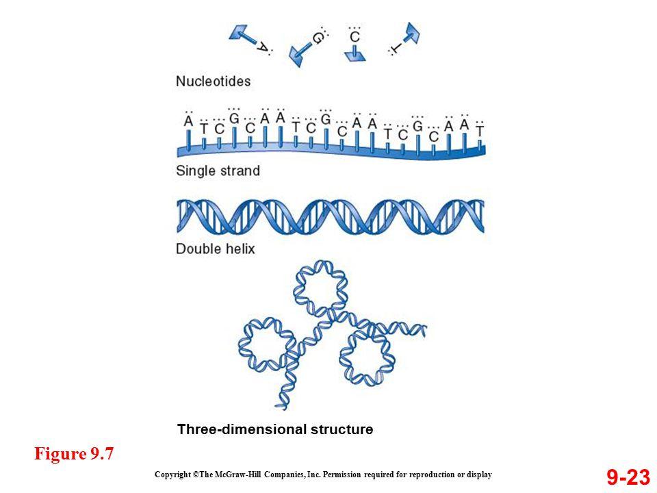 9-23 Figure 9.7 Three-dimensional structure