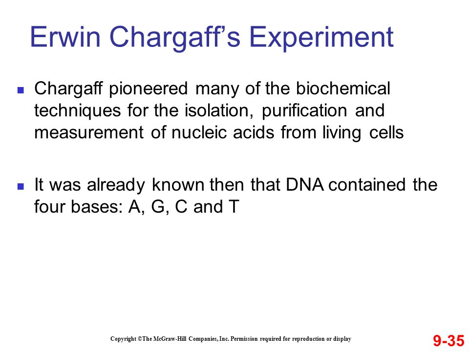 Erwin Chargaff's Experiment