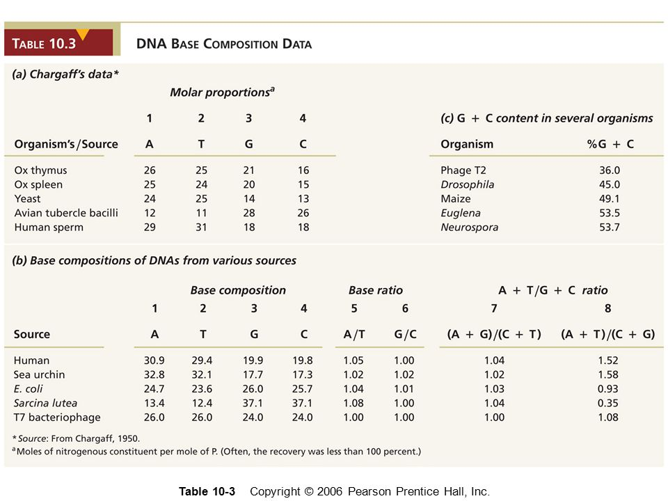 Table 10-3 Copyright © 2006 Pearson Prentice Hall, Inc.