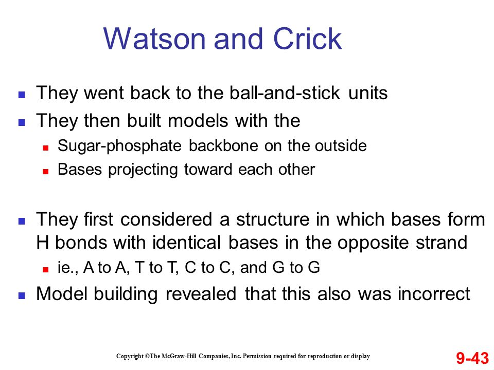Watson and Crick They went back to the ball-and-stick units