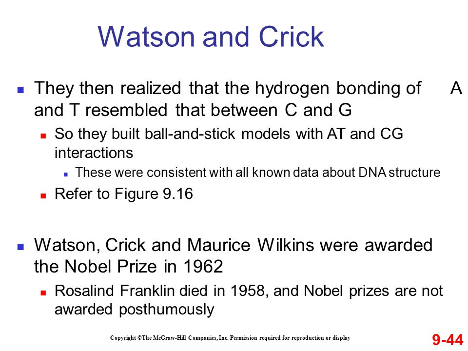 Watson and Crick They then realized that the hydrogen bonding of A and T resembled that between C and G.