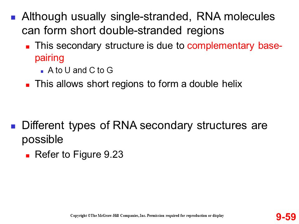 Different types of RNA secondary structures are possible