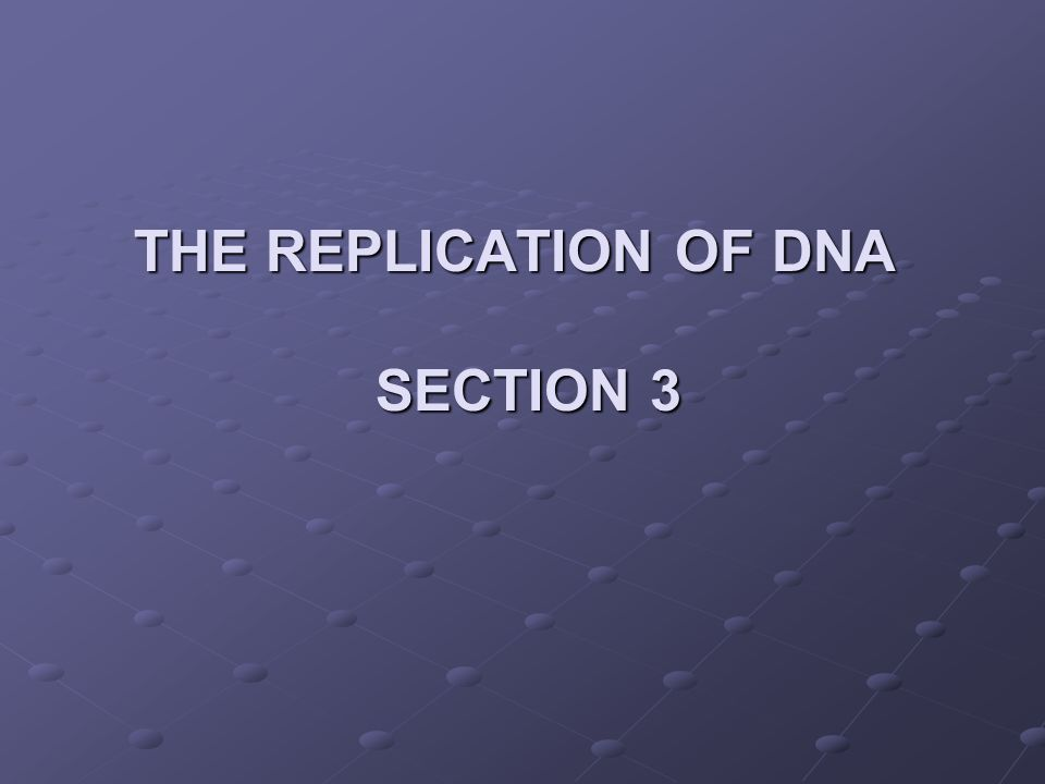 The Replication of DNA section 3