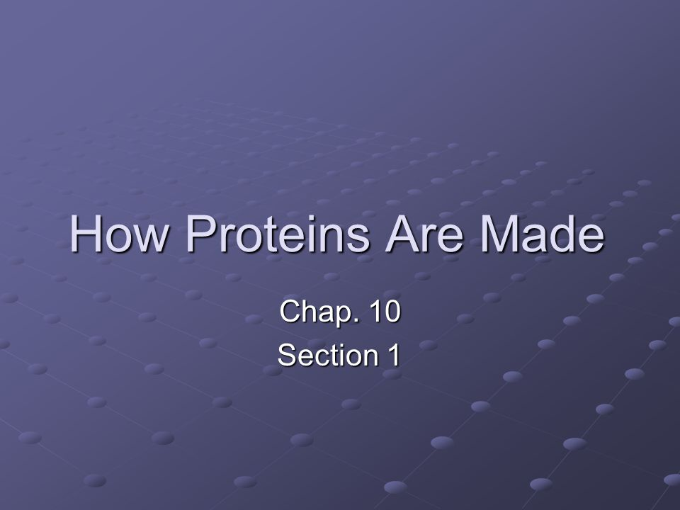 How Proteins Are Made Chap. 10 Section 1