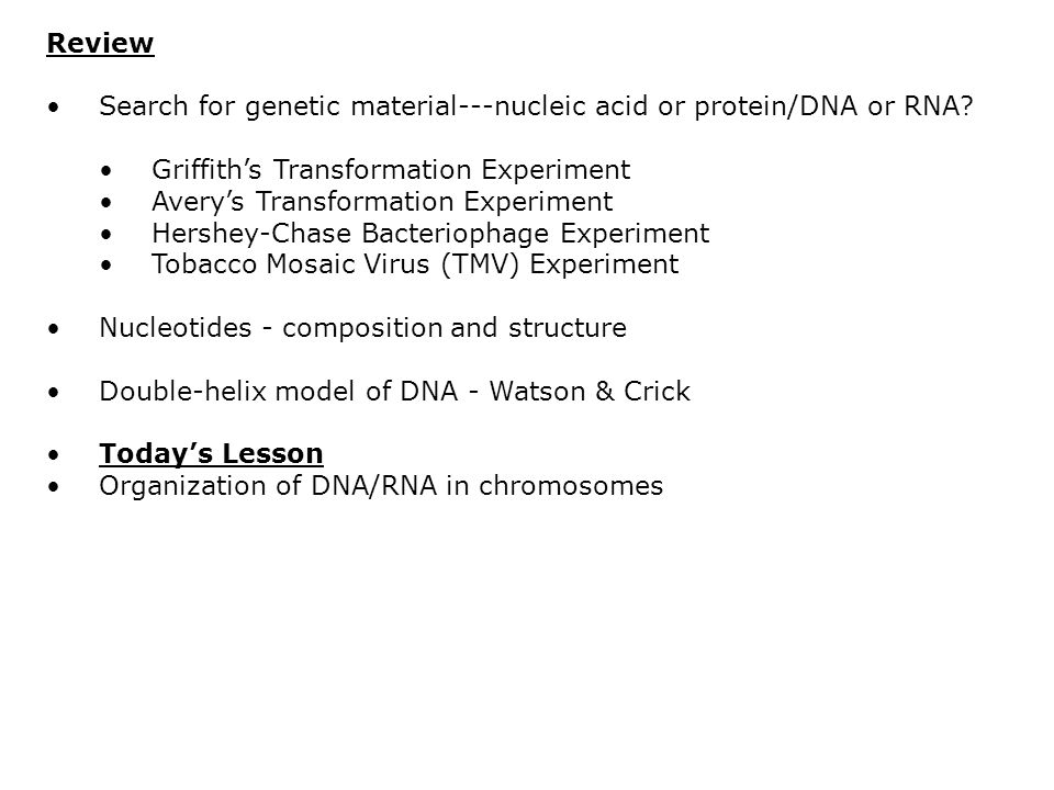 Review Search for genetic material---nucleic acid or protein/DNA or RNA Griffith's Transformation Experiment.