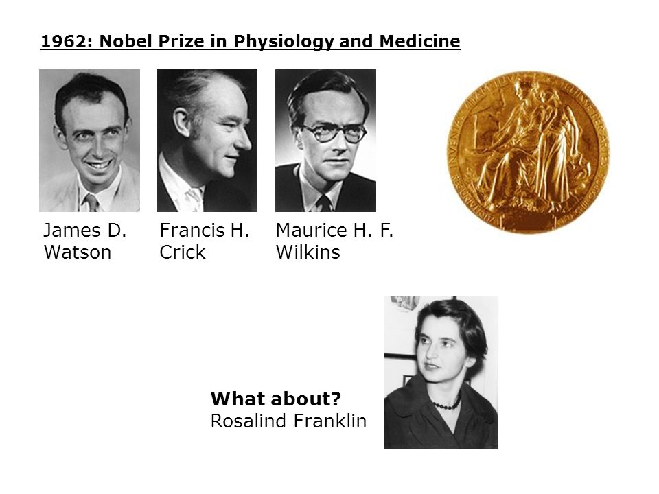 James D. Watson Francis H. Crick Maurice H. F. Wilkins What about