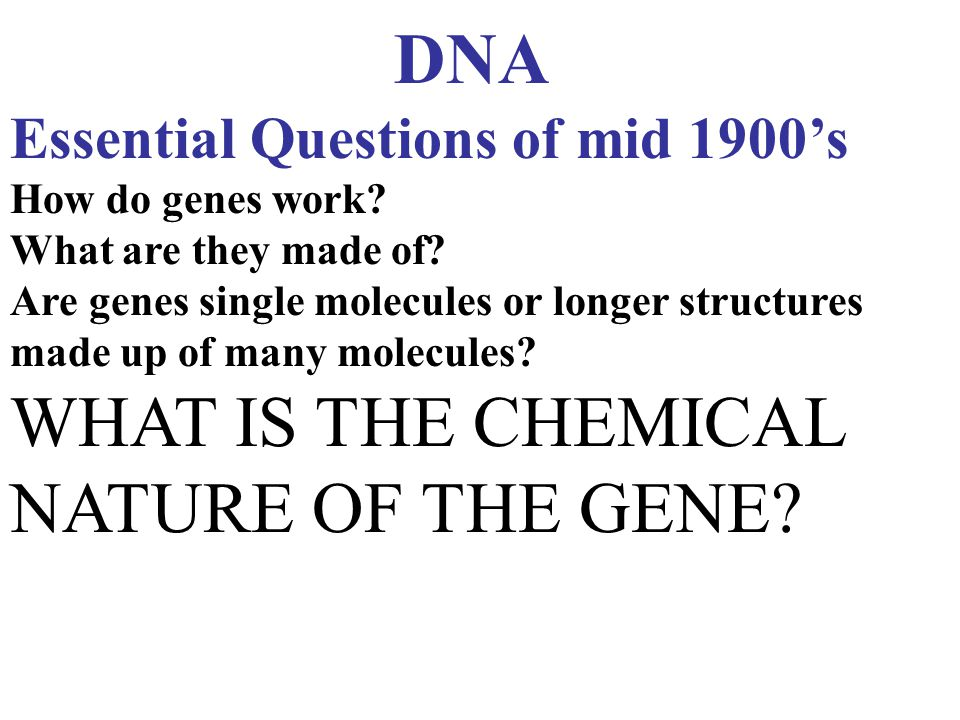 WHAT IS THE CHEMICAL NATURE OF THE GENE