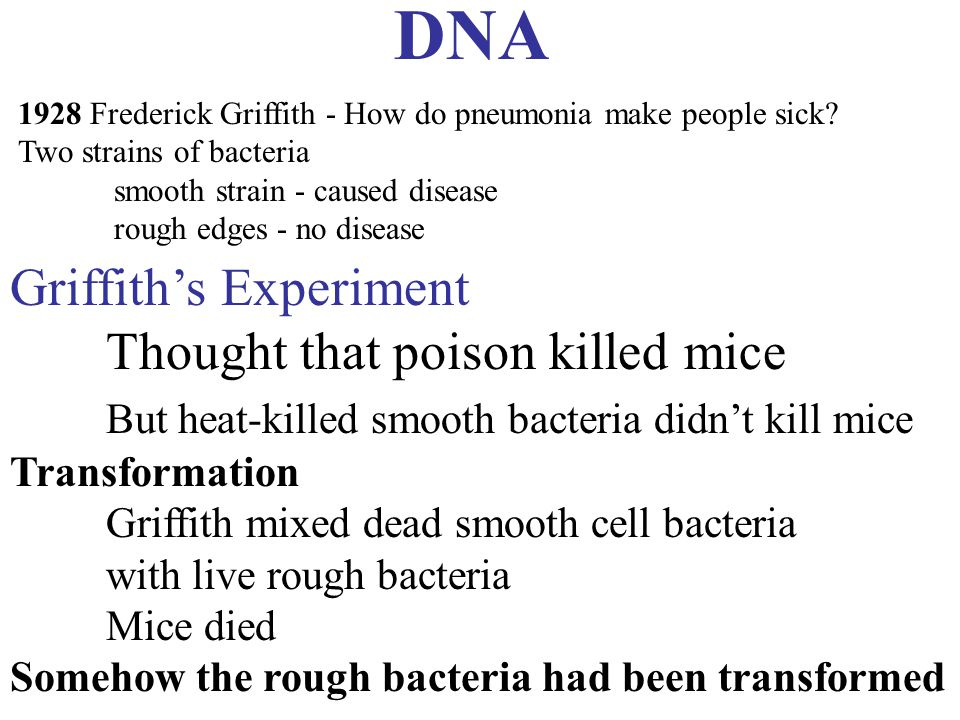 DNA Griffith's Experiment Thought that poison killed mice