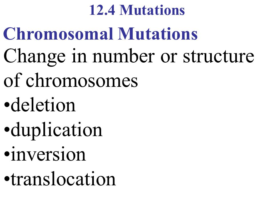 Change in number or structure of chromosomes •deletion •duplication