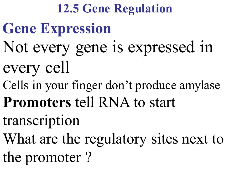 Not every gene is expressed in every cell