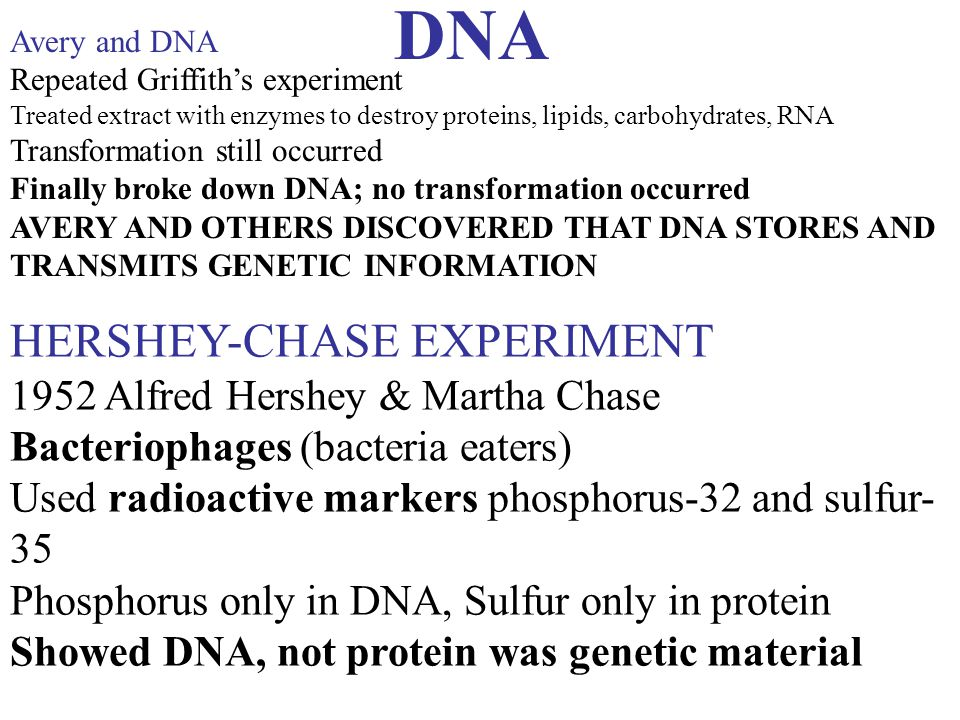 DNA HERSHEY-CHASE EXPERIMENT 1952 Alfred Hershey & Martha Chase