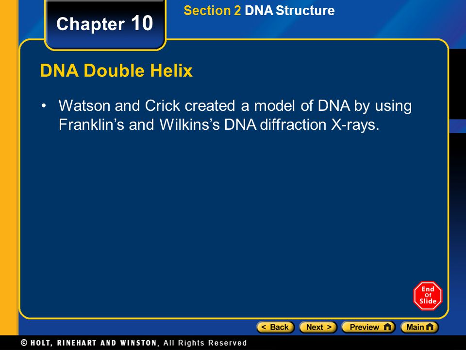 Chapter 10 DNA Double Helix