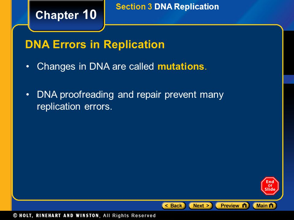 DNA Errors in Replication