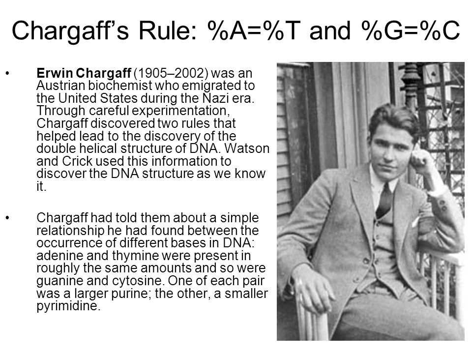 Chargaff's Rule: %A=%T and %G=%C