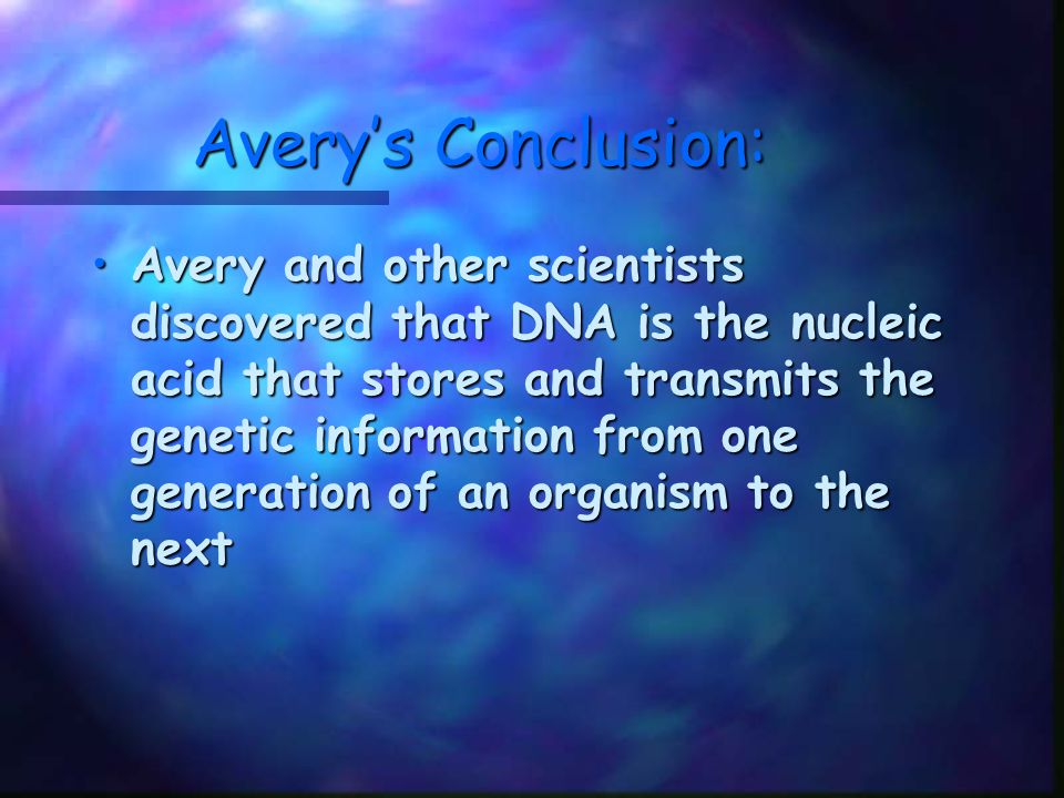 Avery's Conclusion: