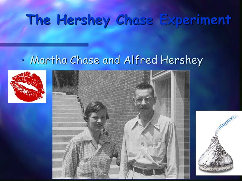 The Hershey Chase Experiment