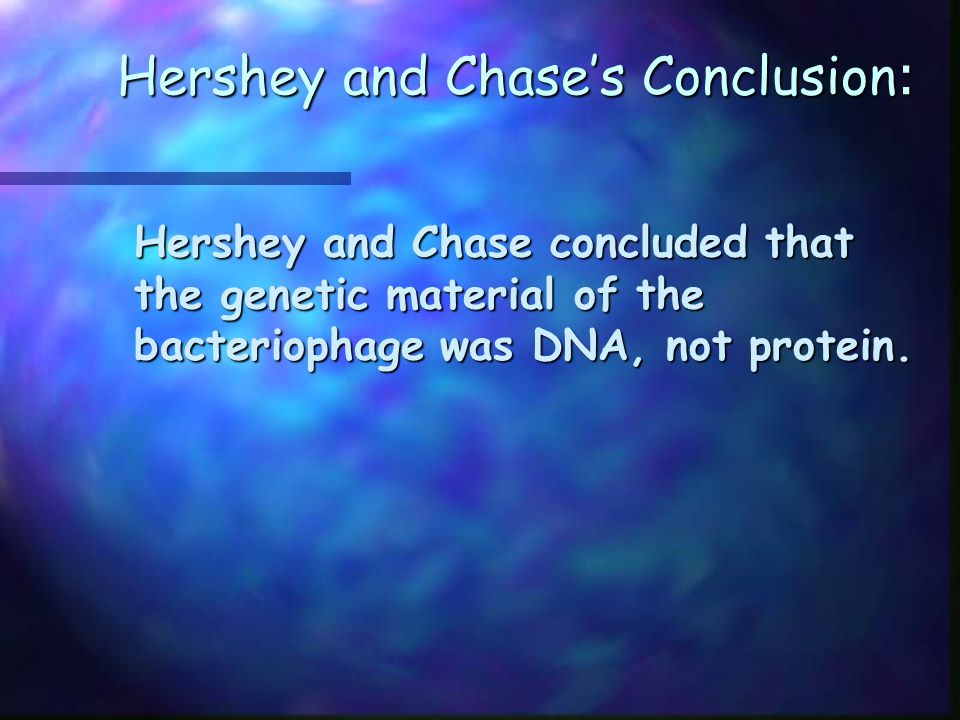 Hershey and Chase's Conclusion: