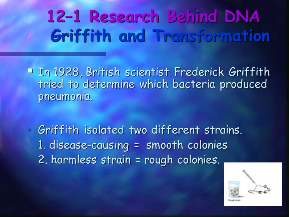 12–1 Research Behind DNA Griffith and Transformation