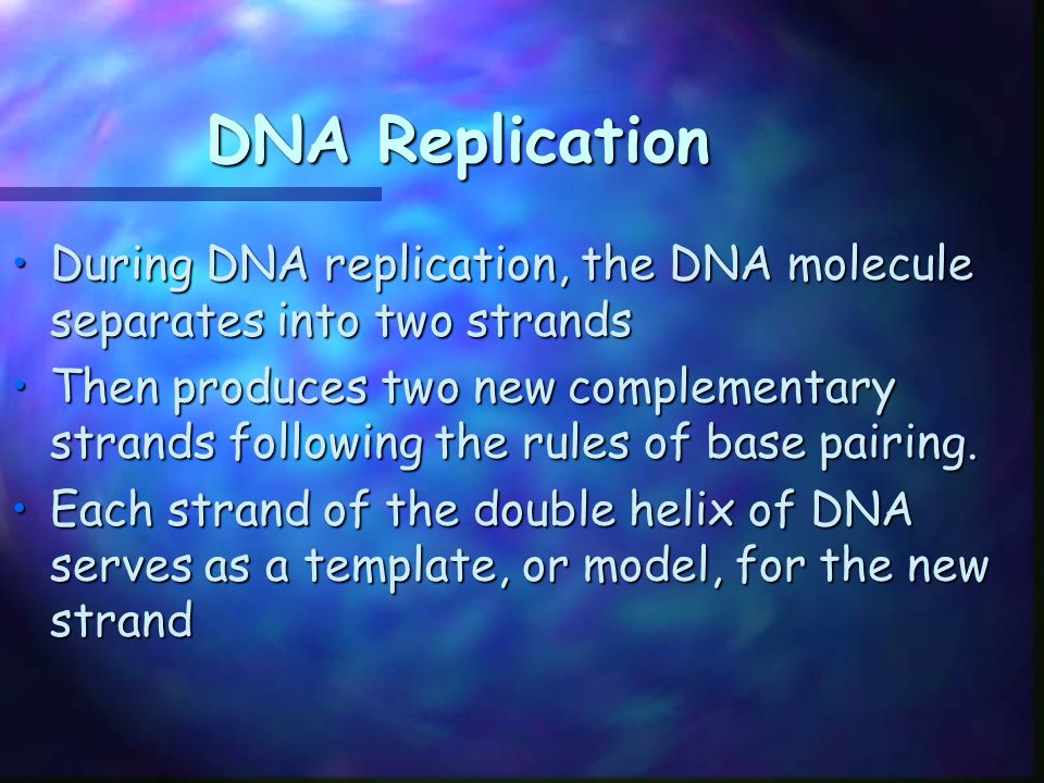 DNA Replication During DNA replication, the DNA molecule separates into two strands.