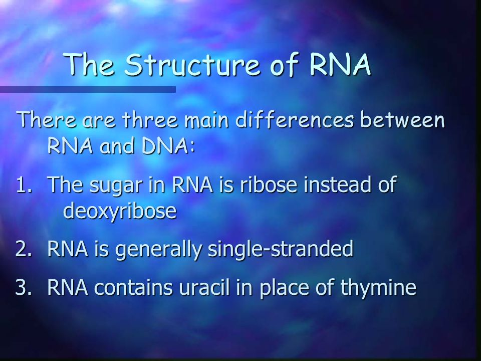 The Structure of RNA There are three main differences between RNA and DNA: The sugar in RNA is ribose instead of deoxyribose.