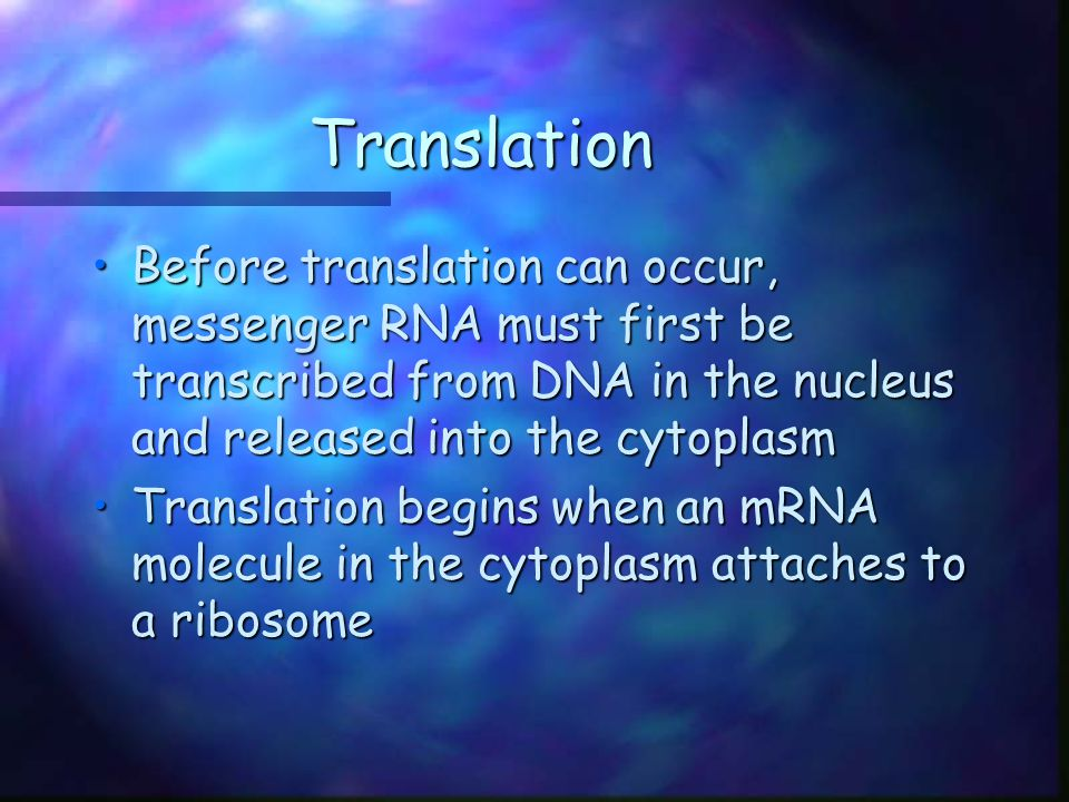 Translation Before translation can occur, messenger RNA must first be transcribed from DNA in the nucleus and released into the cytoplasm.
