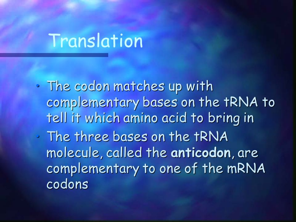 Translation The codon matches up with complementary bases on the tRNA to tell it which amino acid to bring in.