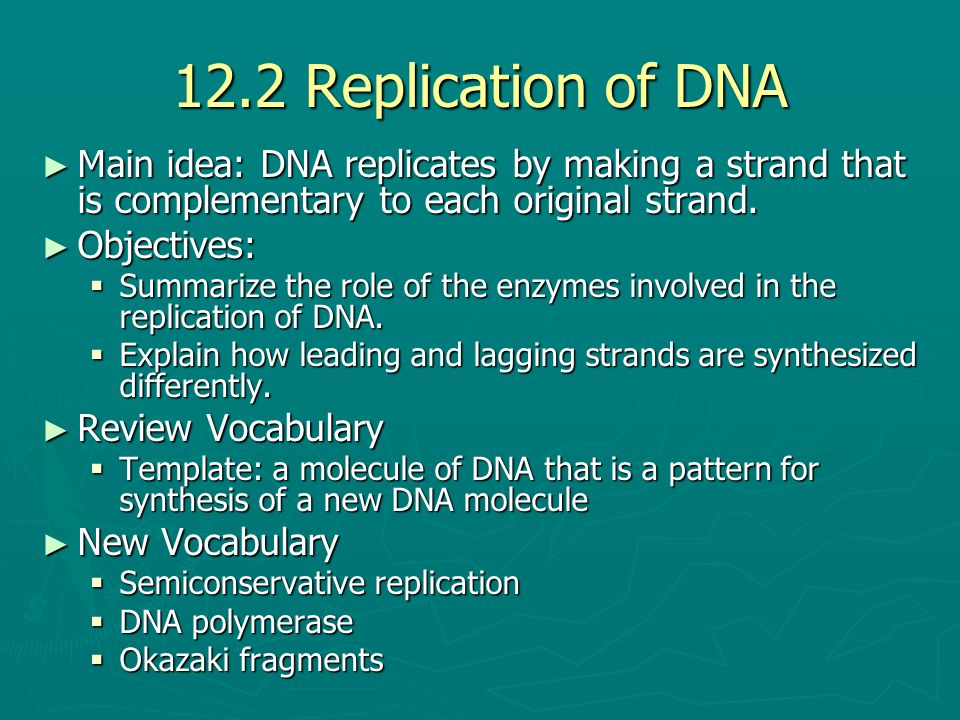 12.2 Replication of DNA Main idea: DNA replicates by making a strand that is complementary to each original strand.
