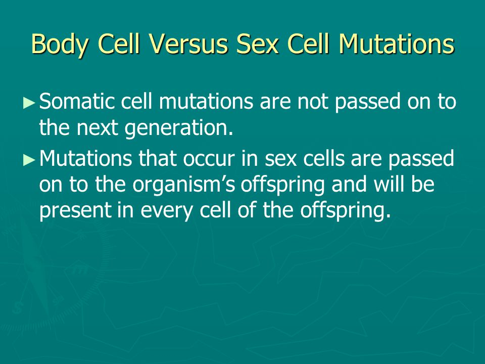 Body Cell Versus Sex Cell Mutations