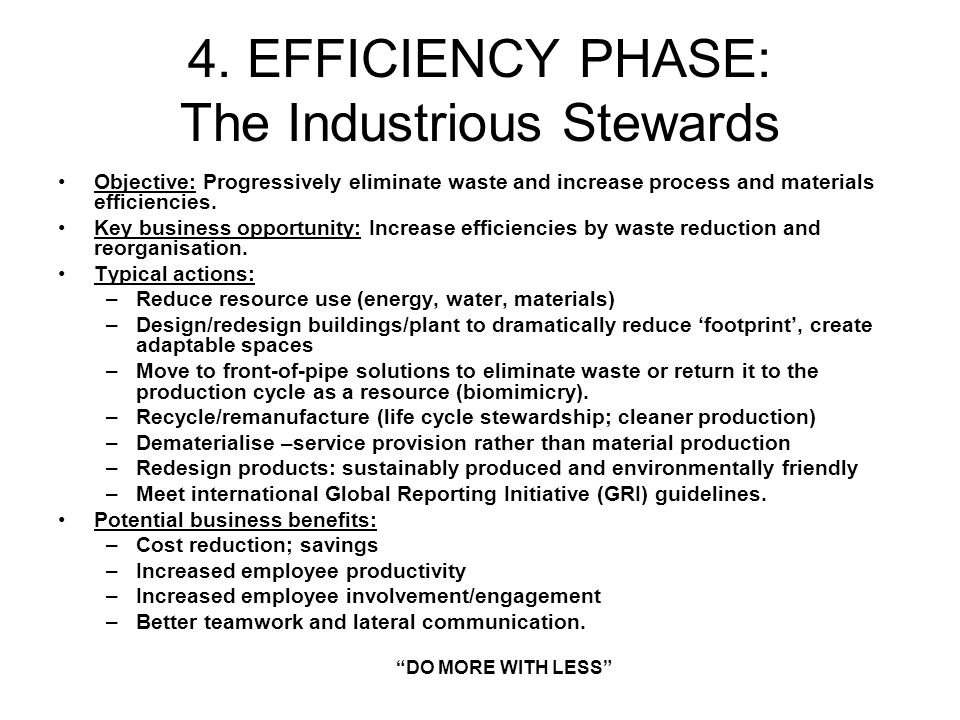 4. EFFICIENCY PHASE: The Industrious Stewards