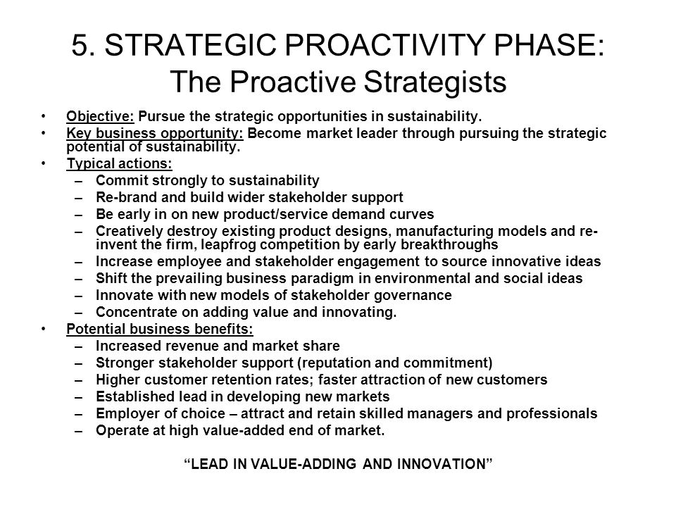 5. STRATEGIC PROACTIVITY PHASE: The Proactive Strategists