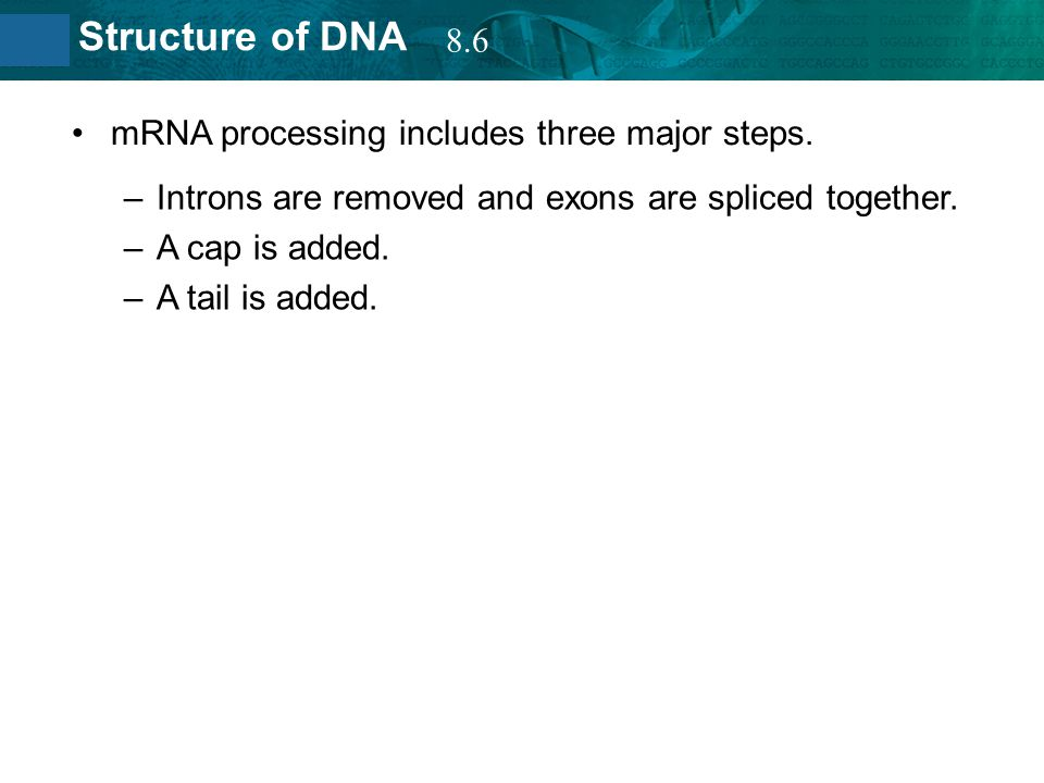 8.6 mRNA processing includes three major steps. Introns are removed and exons are spliced together.