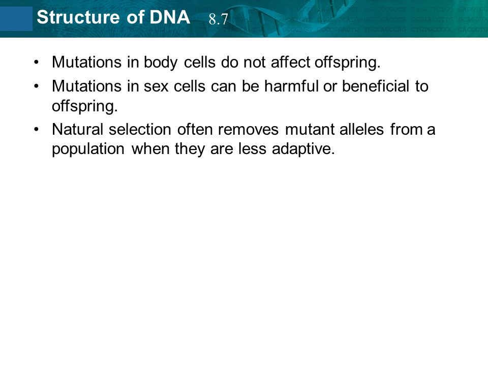 8.7 Mutations in body cells do not affect offspring. Mutations in sex cells can be harmful or beneficial to offspring.