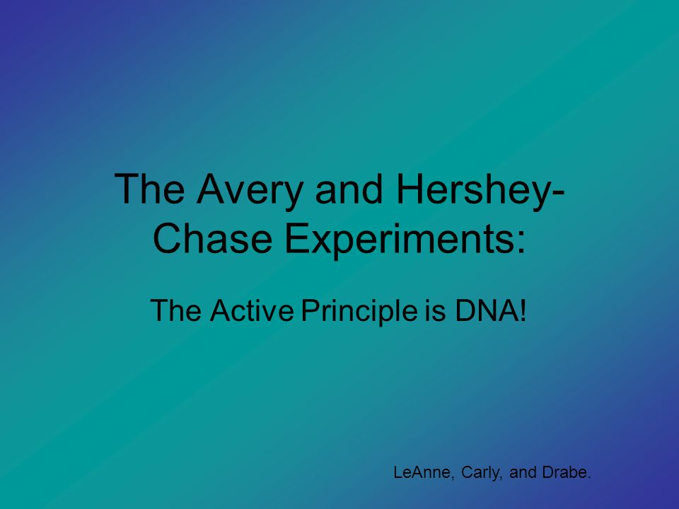 The Avery and Hershey-Chase Experiments: