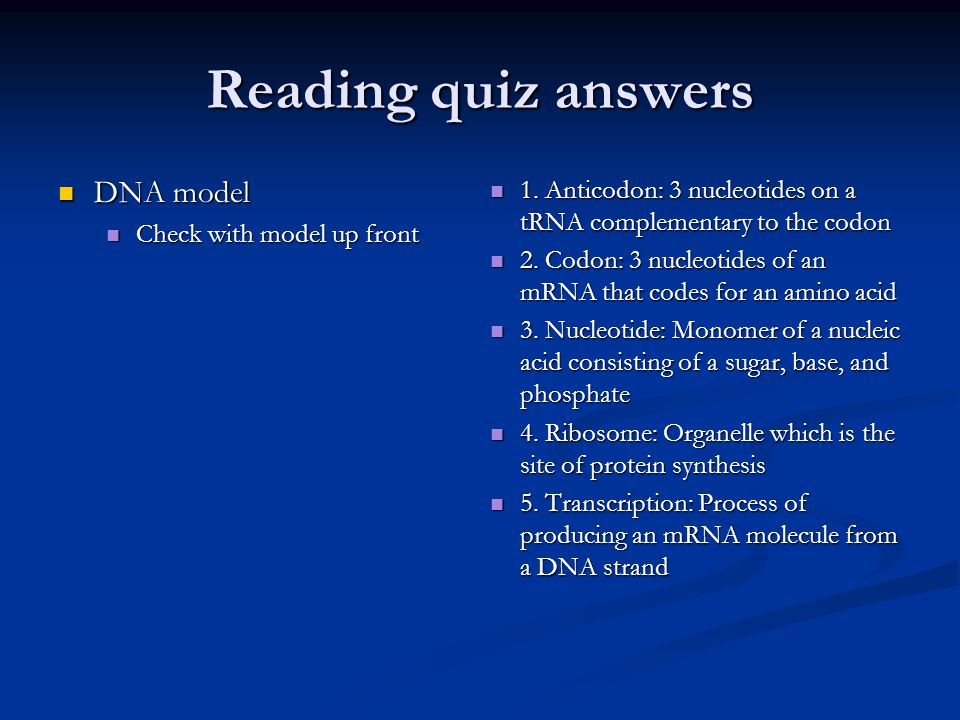 Reading quiz answers DNA model