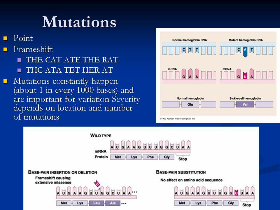 Mutations Point Frameshift