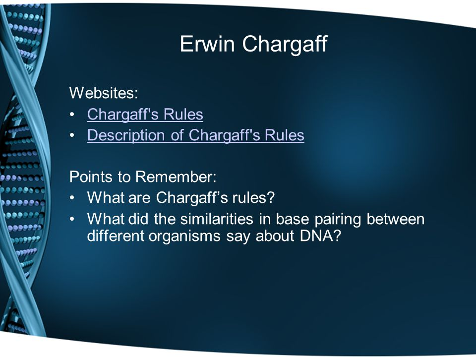 Erwin Chargaff Websites: Chargaff s Rules