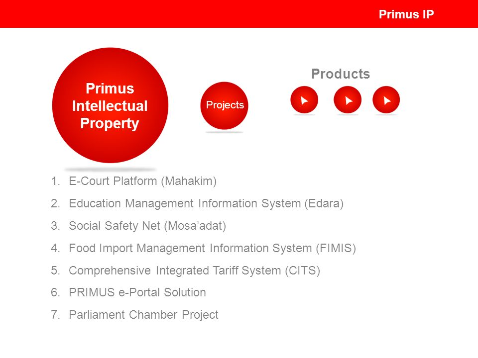 Primus Intellectual Property