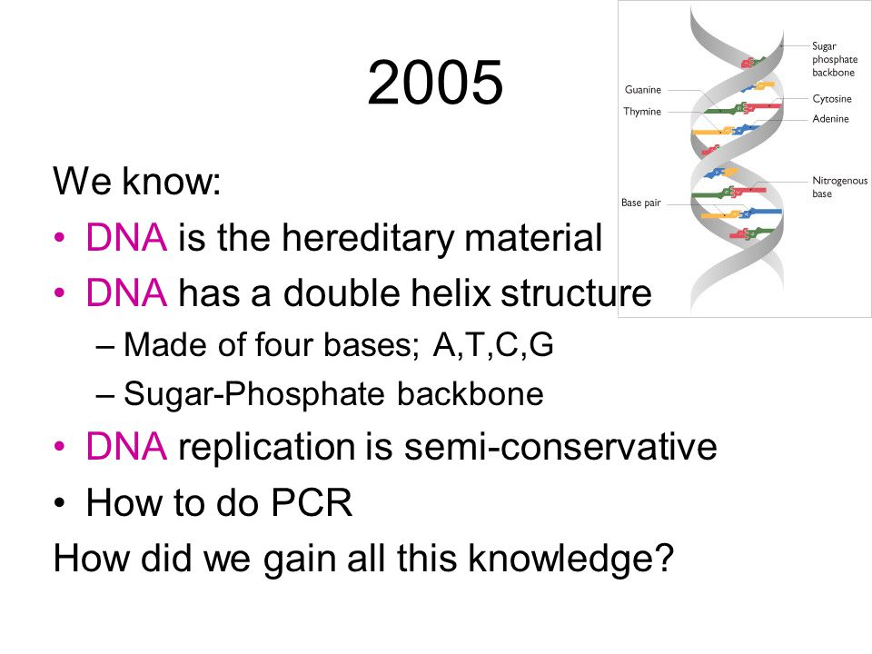 2005 We know: DNA is the hereditary material