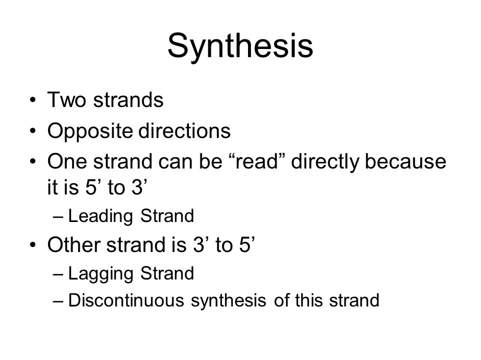 Synthesis Two strands Opposite directions