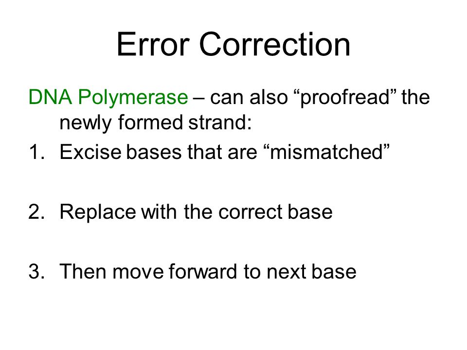 Error Correction DNA Polymerase – can also proofread the newly formed strand: Excise bases that are mismatched