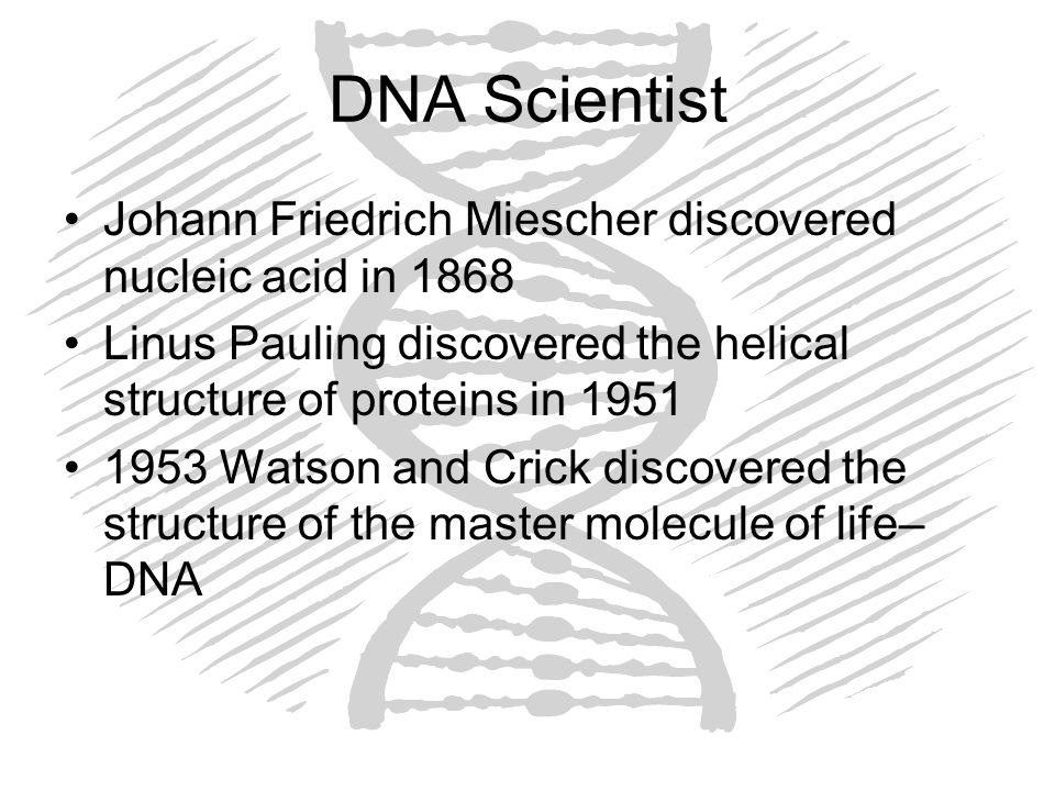 DNA Scientist Johann Friedrich Miescher discovered nucleic acid in 1868. Linus Pauling discovered the helical structure of proteins in 1951.