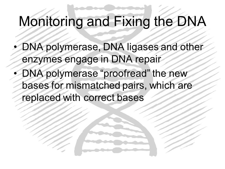 Monitoring and Fixing the DNA